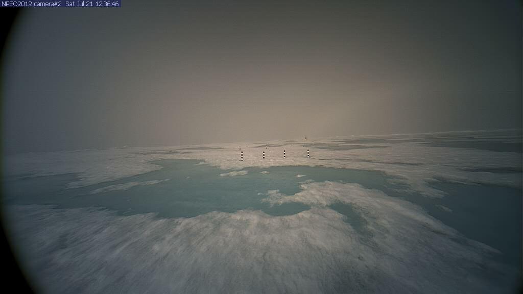 Watch santa claus live on his north pole webcam