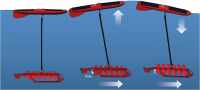 Schematic diagram of waveglider's surface float and sub-surface fins or wings which provide forward propulsion.