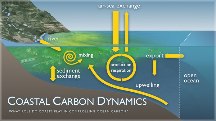 Coastal Carbon Dynamics Image 2