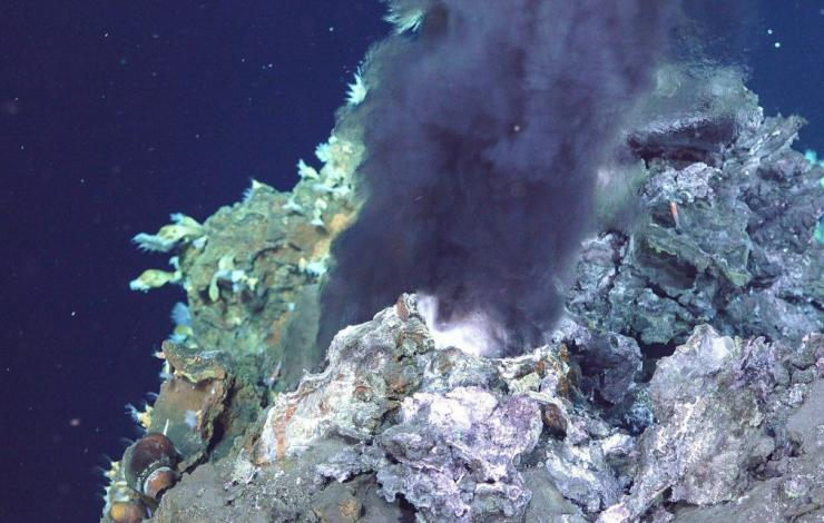 newly discovered hydrothermal vent from this expedition