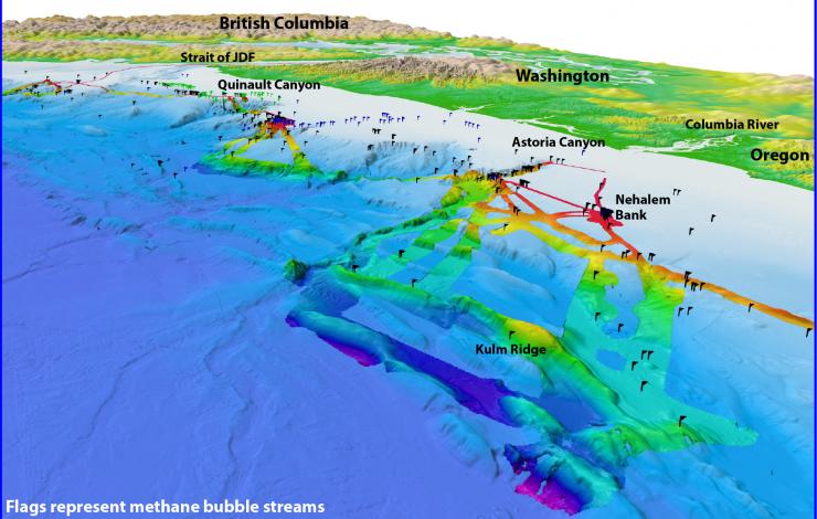 Methane Seeps - Northern Cascadia Margin
