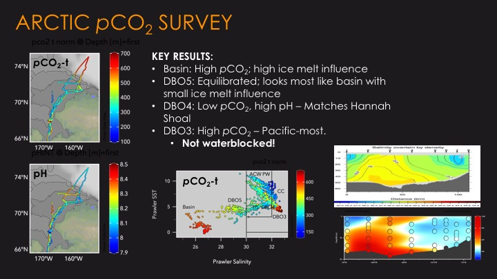 Arctic-DBO NCIS 2018 Key Results from the PC02 survey