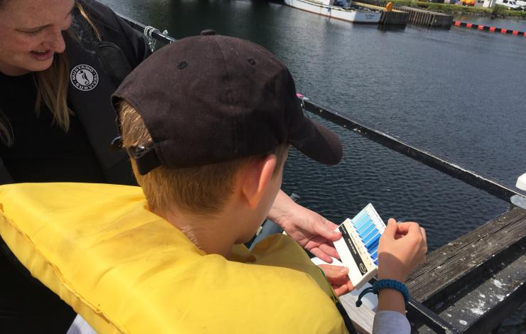 Students analyzing a water sample for dissolved oxygen levels.