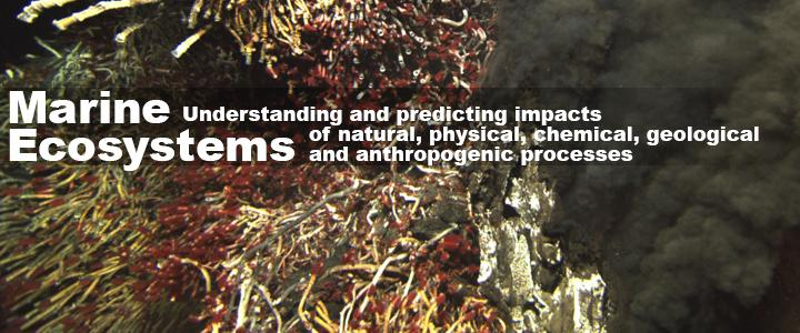 "Banner image text: ""Ecosystems: Understanding and predicting impacts of natural, physical, chemical, geological and anthropogenic processes"""