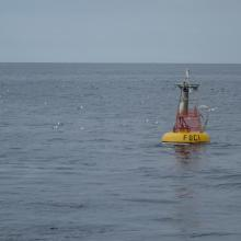 A mooring used by EcoFOCI in the Bering Sea to understand the determine the influence of the physical and biological environments on marine populations and the subsequent impact on fisheries