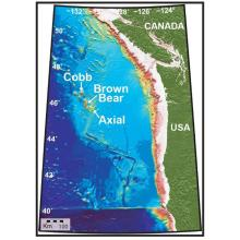 Bathymetric chart of Axial Seamount, located ~5000 ft below the ocean surface and ~250 mi west of Newport, Oregon. Axial Seamount hosts a variety of geophysical sensors that are part of the Ocean Observatory Initiative (OOI) Cabled Array.