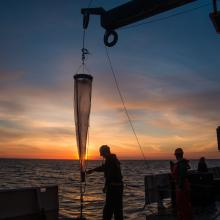 Deploying a vertical net during the 2016 West Coast Acidification Cruise on the NOAA Ship Ronald H. Brown.